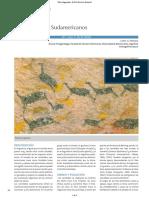 Art revision los camelidos sudamericanos.pdf