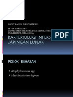 bakteriologi infeksi kulit