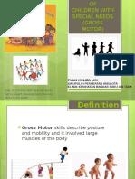 Management of Gross Motor (Pt)