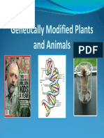 Powerpoint Genetically Modified Plants and Animals(Biotech)