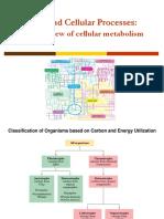 BT1000 - Cellular Metabolism.pdf