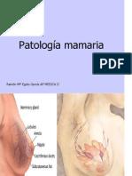 anatomia patologica - mama2