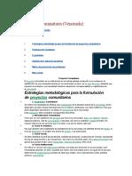 Proyecto Comunitario Modelo