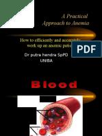 Anemia Uniba Kuliah 9-1-13