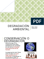 DEGRADACIÓN AMBIENTAL 1