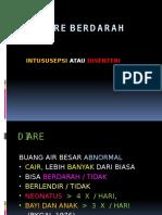 DIARE_BERDARAH.pptx