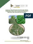 Manual Cultivo Nopal Verdura