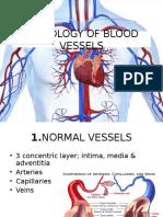 Patologi Pembuluh Darah
