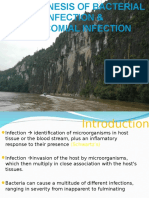 Pathogenesis of Bacterial Infection and Nosocomial Infection