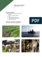 Actividades Economicas de La Region