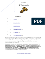 manuale di tamburello.pdf