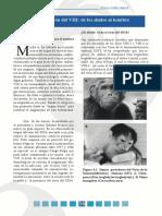 La evolución del VIH SIDA.  De los simios al hombre.
