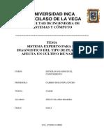 TemaI-Diagnostico-TipoPlagaAfectaCultivoNaranja