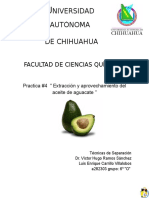 Practica-aguacate-final.docx