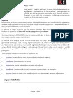 Tema 5.1.a La Inlfacion, Concepto, Origen, Causas Ver 17mar2015