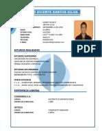 Curriculum Vitae - Kleber Santos