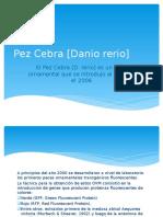Una casuística en análisis de riesgos de Danio rerio en Perú