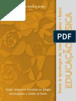 Coleção Componentes Curriculares-SP- 9_educacao_fisica-1