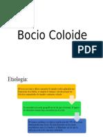 Bocio-Coloide