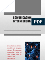 COMUNICACIÓN INTERNEURONAL