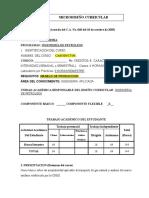 Gasoductos- Microdiseño Curricularelectiva 2016-2