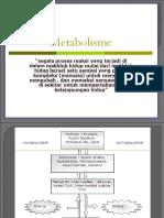 PERTEMUAN KE 2metabolisme Karbo Kesmas