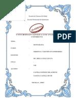 Monografia Gerencia-y-gestion IV