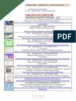 EL_CUERPO_HUMANO_APARATO_LOCOMOTOR.pdf
