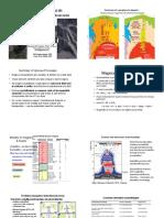 2 Lima Porphyry Alteration Notes