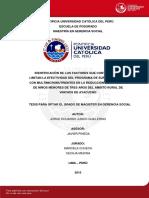 Junco Guillermo Jorge Identificacion Factores