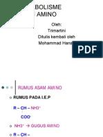 metabolisme-asam-amino