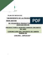 Plan de Negocios de Produccion de Papa Nativa.docx Final. Semi Docx.pdf (1)