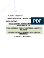 Plan de Negocios de Produccion de Papa Nativa.docx Final. Semi Docx.pdf (1)