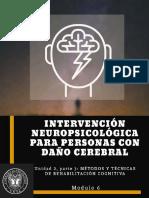 intervencionendañocerebral3.pdf