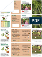 Moringa Brochure 2up Reprint 1