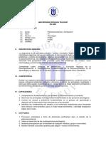 silabo_psn.pdf