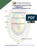 INF.N° 01 PRACTICAS PRE-PROFESIONALES