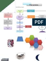 Flujogramas y Diagramas