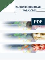Organizacion_curricular_por_ciclos.pdf
