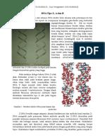 DNA Tipe Z