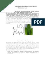 Extracción e Identificación de Alcaloides de Hojas de Coca Erythroxylum Coca