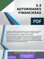 5.3 Autoridades Financieras