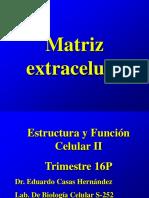 4 Matriz Extracelular Bis 1