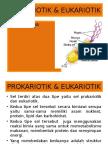 SEL PROKARIOTIK AND EUKARIOTIK.ppt