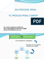 Proceso Penal Comun Uss 2013 II