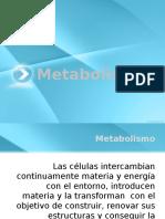 Metabolismo INTRO