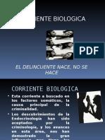 CORRIENTE BIOLOGICA COMPLETA
