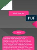 Makromineral Semester 3
