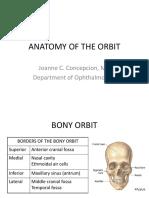 Anatomy of the Orbit (1)