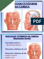 musculos cabeça e pescoco slides.ppt